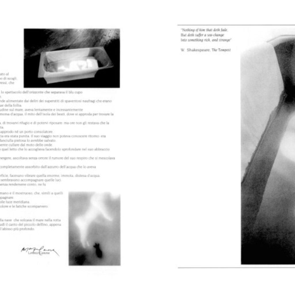 primomare. testo di Lorenzo Canova