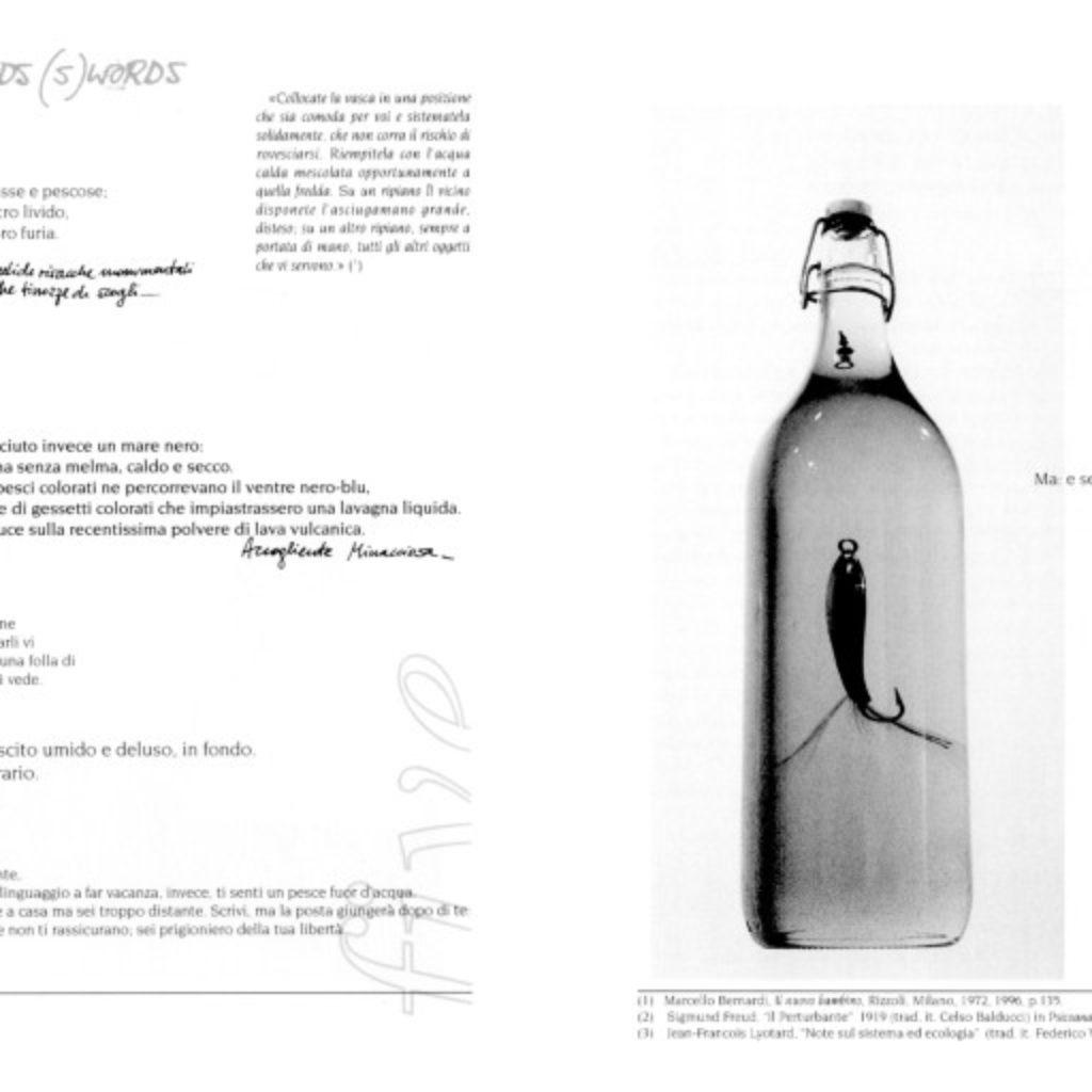 quintomare. testo di Augusto Pieroni