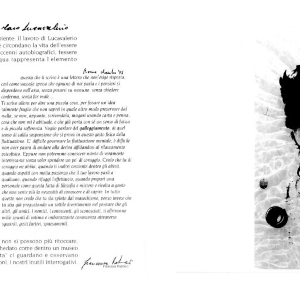 sestomare. testo di Francesca Petracci