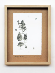 just watching the trees. stampa a ricalco su carta calcografica e mdf cm. 42,5 x 32,5. 2014