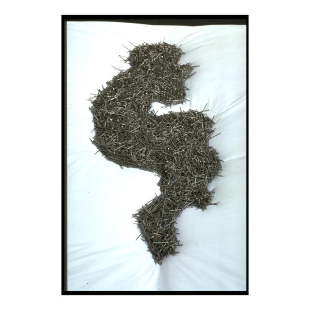 bed of nails (part). legno, stoffa, chiodi, farfalla dimensioni ambientali. ex Mattatoio, Testaccio, Roma
