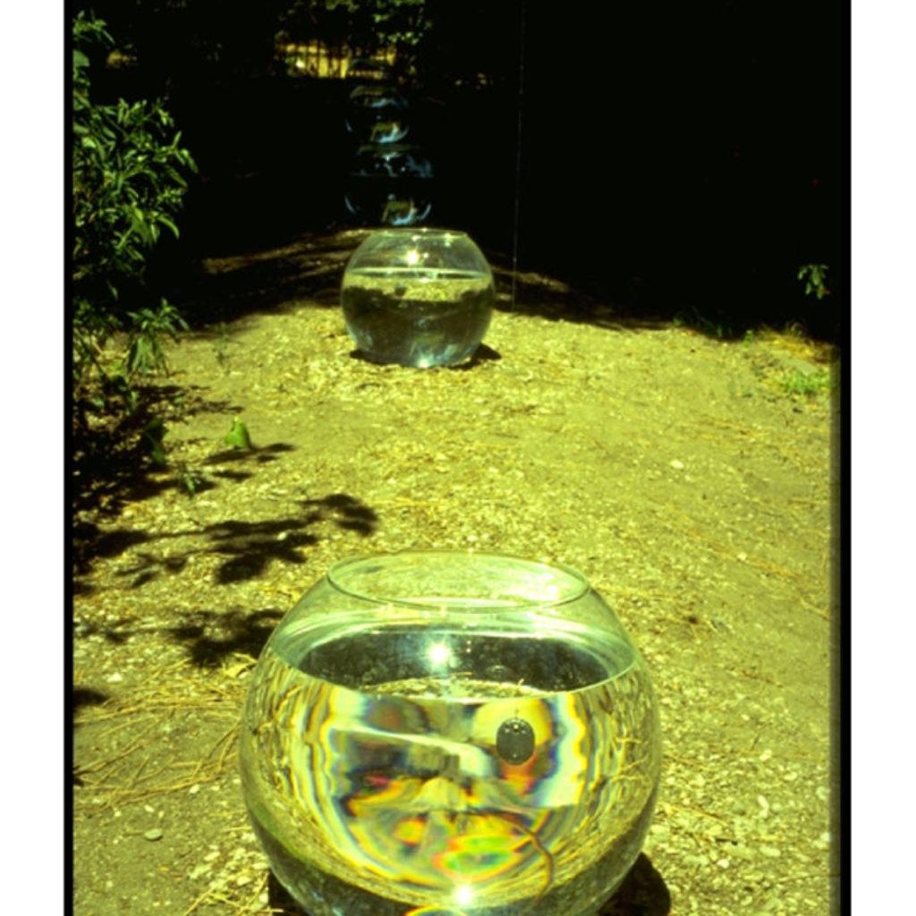 along the river. acquari, attrezzature da pesca dimensioni ambientali. Centro Culturale dell'Ambasciata d'Egitto, Roma
