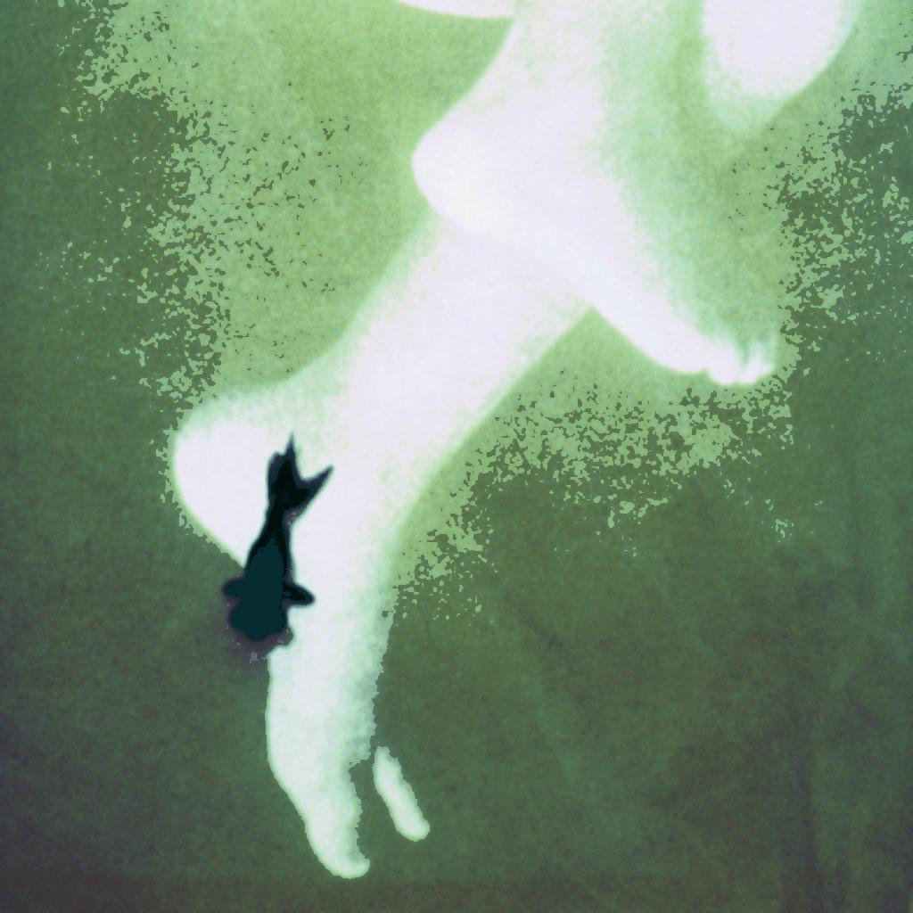 like a rebirth (part). vasca da bagno, tela, acqua, pesce rosso, proiezione cm. 180 x 70 x 60. 1997