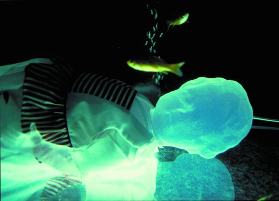 un angolo di cielo (part). acquario, resina, fotografie dimensioni ambientali. XII Quadriennale di Roma