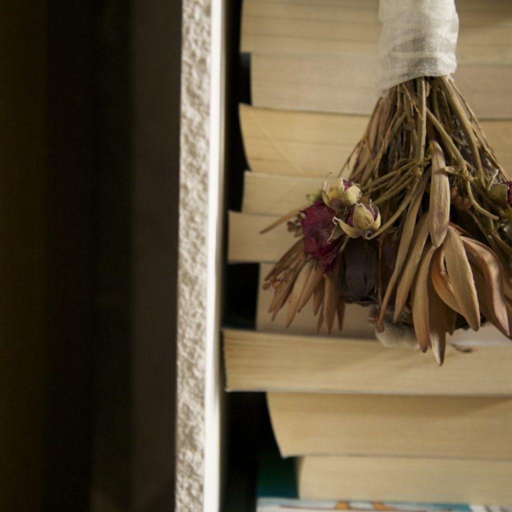 INNOMINEDOMINI (fiori). sala santa rita, dimensioni ambientali. 2016
